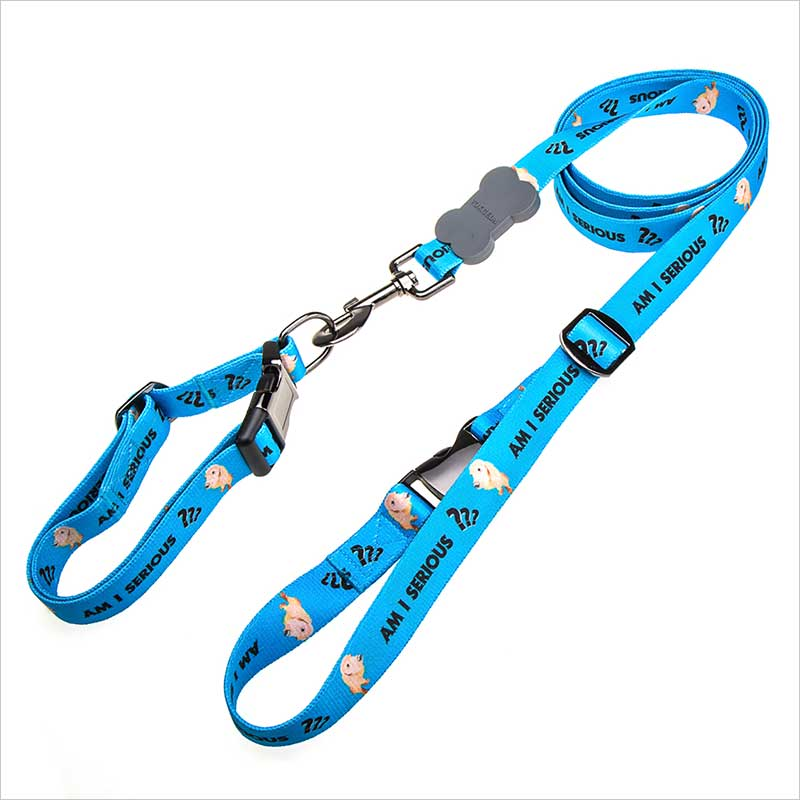 Custom quality collars and leads for dogs