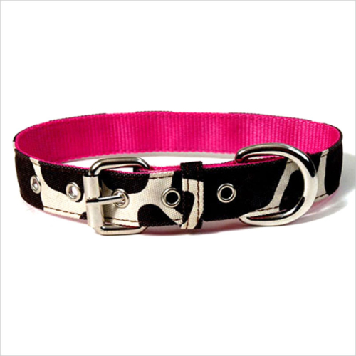 Hunting Dog Collar Reviews