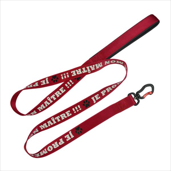 long dog leash
