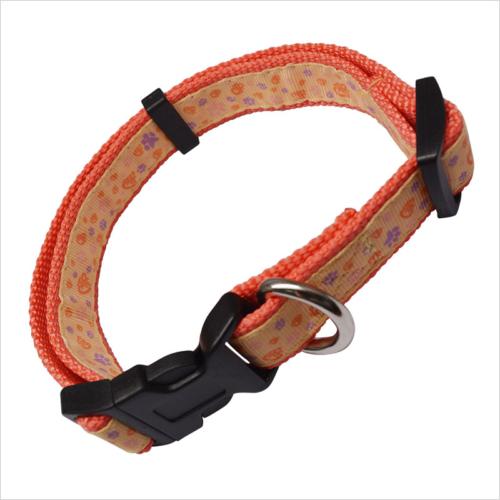 matching dog collar and leash