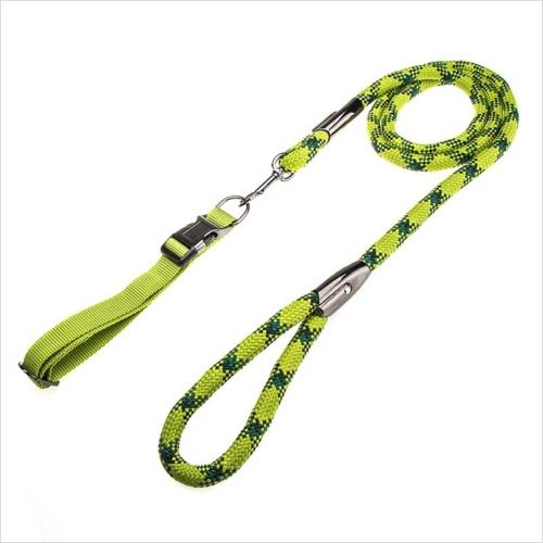 Adjustable green large dog collar and leash set