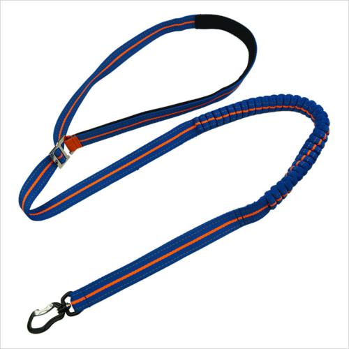 running dog leash